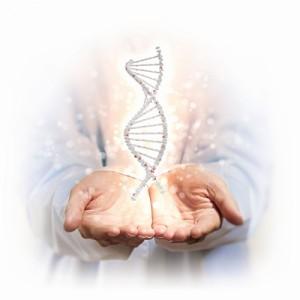 Investigación genetica migraña